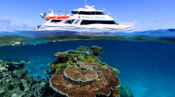 大堡礁-海神号/道格拉斯港