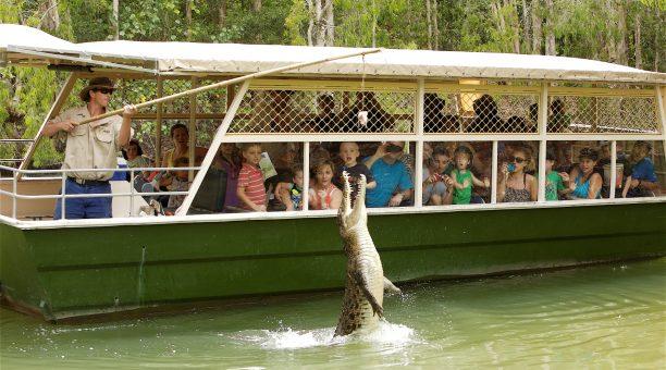 哈特利鳄鱼公园半日游