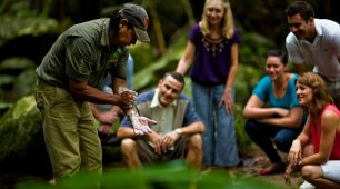 丹翠雨林,苦难角,摩斯曼峡谷一日游-多种语言