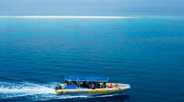 丹翠雨林-考驗角珊瑚之旅