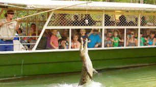 哈特利鱷魚公園半日遊
